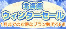 北海道ウィンターセール!1月までのお得なプラン勢ぞろい!