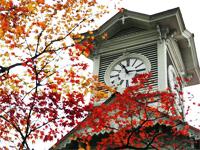 【JALで行く】10・11月出発!往復新千歳空港利用航空券+宿泊の格安航空券パック!観光・ビジネスに使えるフリープラン!札幌道南チョイスフリー 2泊3日(11/28迄)