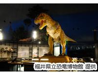 【福井県立恐竜博物館≪常設展≫入館券付!】ホテルフジタ福井