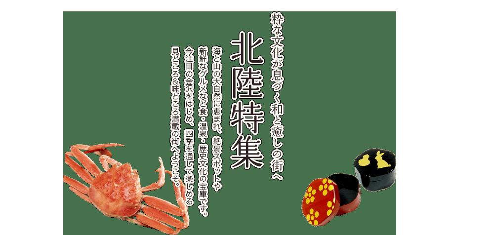 福井 ツアー