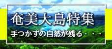 【エリア特集】奄美大島へ行こう!奄美の事がよくわかる詳しい奄美図鑑登場!