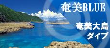 【ダイビングツアー】奄美ブルーの海で思い切りダイビング!お得なプランも多数ご用意!