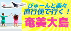 楽々直行便で行く!奄美大島