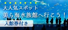 沖縄本島に行くなら外せない!<br>「美ら海水族館」入館券付特集