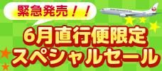 【羽田・大阪発】緊急発売!石垣島<br>5-6月直行便限定スペシャルセール