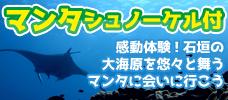 幻想的な光景☆マンタと泳ごう!
