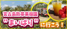 【羽田/中部発】トロピカルガイドツアー&マンゴージュース付