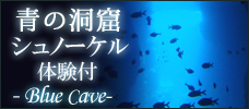 【各地発】大人気!神秘の青の洞窟へ! <br>シュノーケル&魚の餌付け体験付