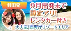 【羽田発】JALで行く沖縄!先の予約がお得!