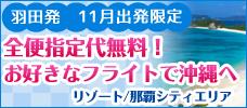 【羽田発】全便無料!好きな便で沖縄へ