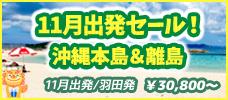 【羽田発】9-11月出発ラストサマーセール!晴れの日が多く海にも入れます!