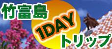これからがいい季節! 竹富1日観光付きプラン