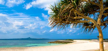 1月の沖縄の天気・気候
