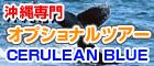セルリアンブルー 沖縄オプショナルツアー