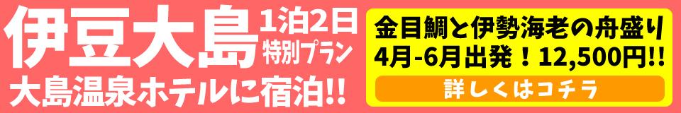 【4-6月限定】大島温泉ホテル日程限定 特別プラン