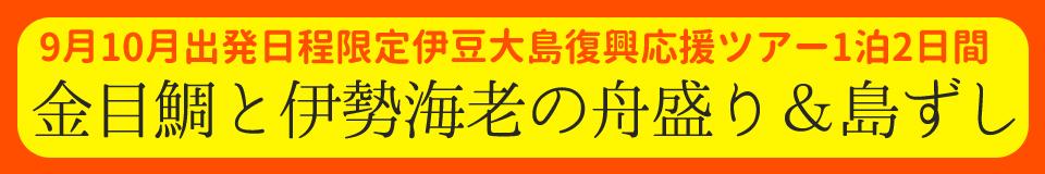 【9・10月限定】秋の特別企画! 大島観光復興応援プラン!!