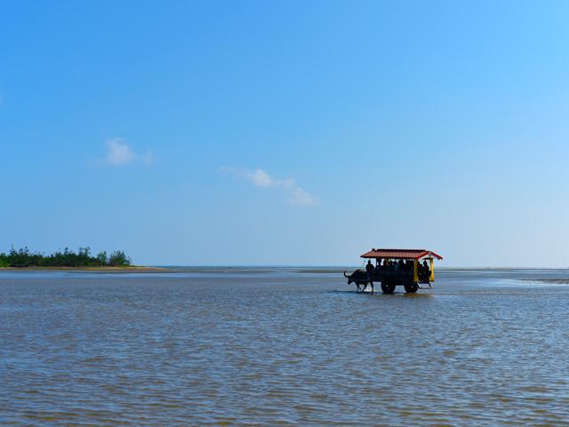 西表島のおすすめ旅行プラン・モデルコース
