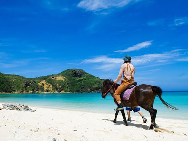 与那国島のおすすめ旅行プラン・モデルコース