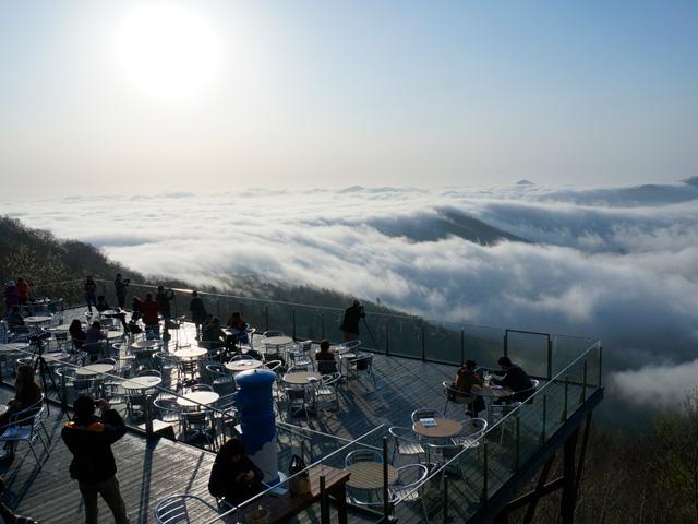 絶景の花畑も雲海も!富良野・美瑛をさくっとめぐり、ゆったりトマムでリゾート満喫!夏の北海道2泊3日 観光モデルコース