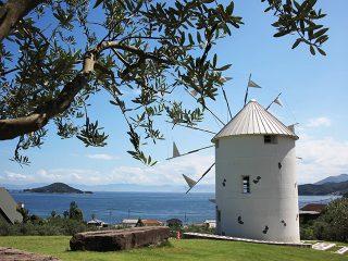 インスタ映えスポットがいっぱい!初めての小豆島旅行におすすめの王道観光1泊2日モデルコース