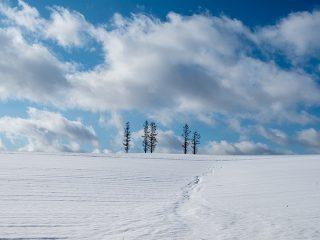 北海道のおすすめ旅行プラン・モデルコース