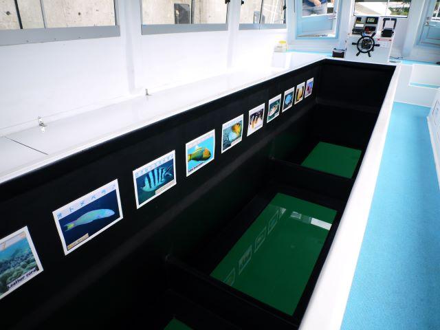 海底観光遊覧船「アークレックス ワン」