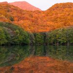 十和田八幡国立公園をめぐる!天空トレッキングと絶景散策!奥入瀬渓流・十和田エリア1泊2日モデルコース