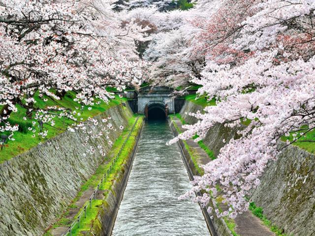 琵琶湖第一疏水