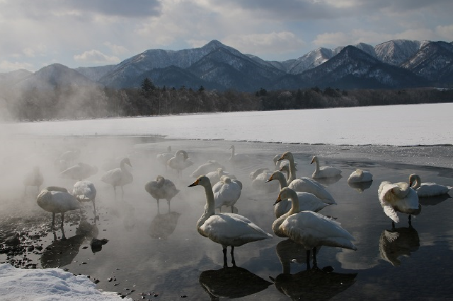 屈斜路湖 コタン温泉