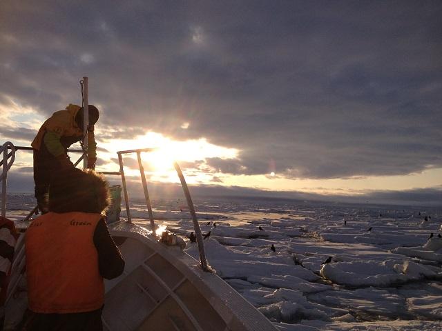 早朝流氷・バードウォッチングクルーズ
