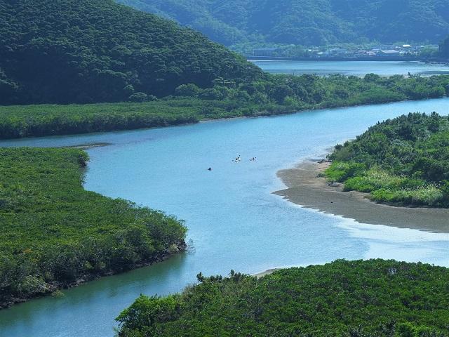 黒潮の森マングローブパーク 道の駅 奄美大島 住用
