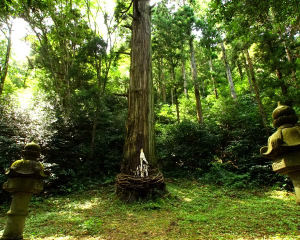 布施の大山神社