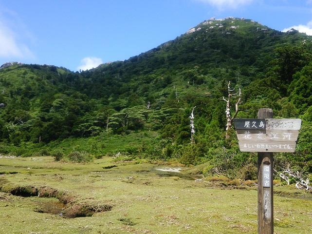 花之江河(はなのえごう)