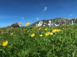 黒部ダムと雲上の別天地室堂! 夏の立山黒部アルペンルートを1泊2日で通り抜けるおすすめモデルコース