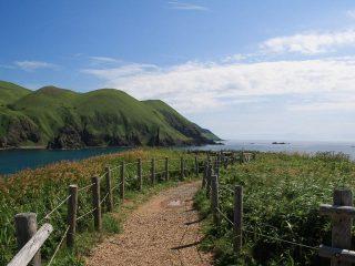 往復空路で楽々移動! 利尻島・礼文島の自然とグルメを満喫する3泊4日の観光モデルコース